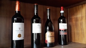 die Rioja Begleieter